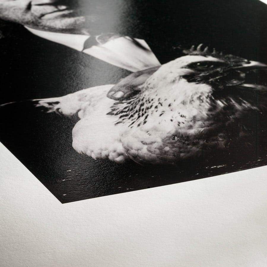 FineArt Glossy/Satin - Photo Rag Baryta